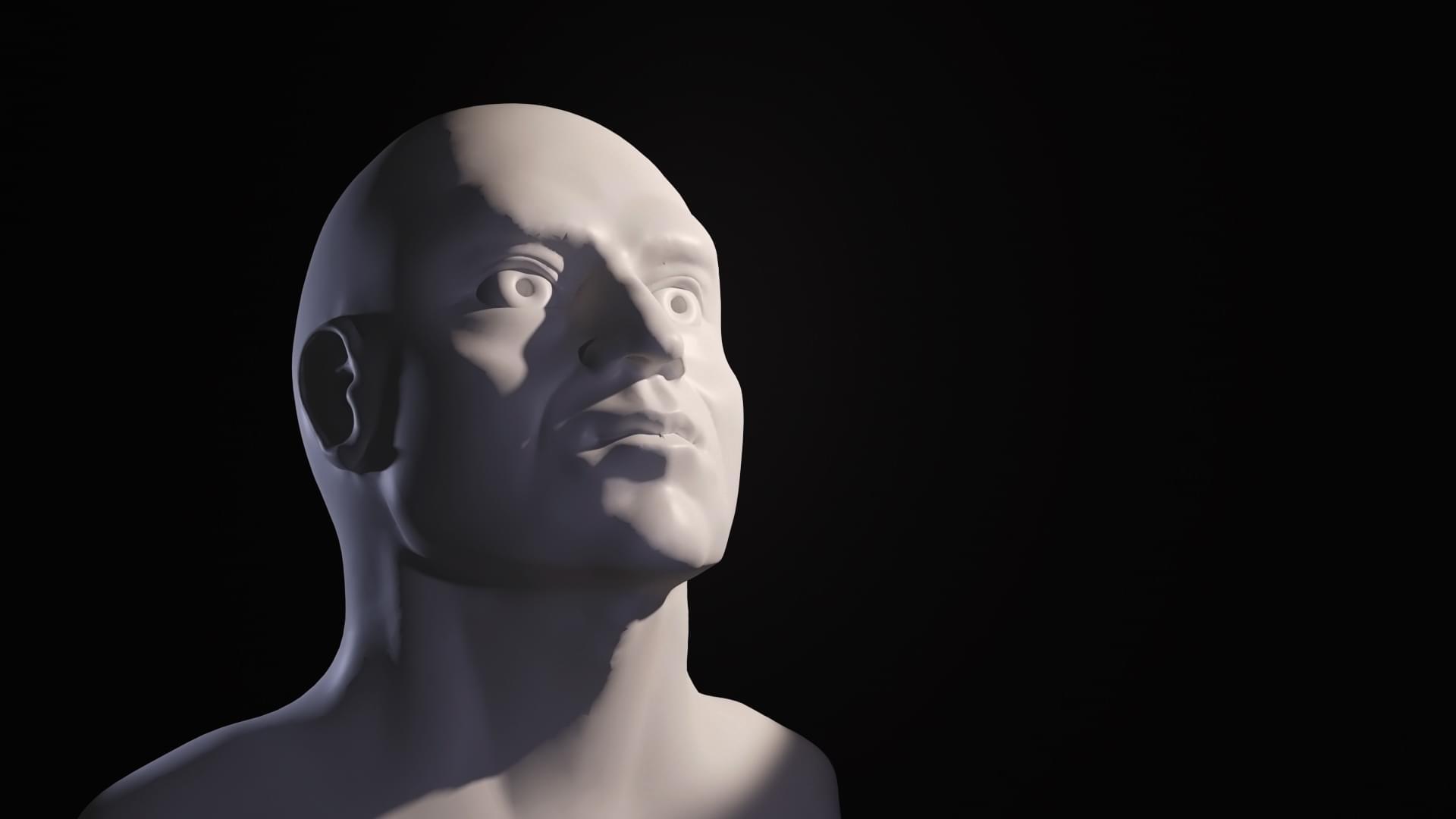 Die bust of a serious looking man.